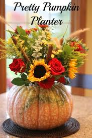 pretty pumpkin planter planters thanksgiving and craft