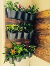 vertibloom living wall garden starter kit modular indoor vertical