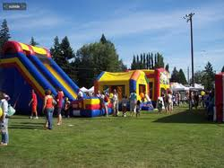 local party rentals party rentals puyallup wa from carnival time your party