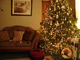 christmas tree tips finding and caring for the perfect tree a