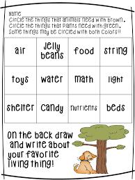 fun math worksheets kindergarten science kindergarten science