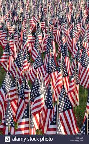 sea of american flags outside the us national cemetery in bourne