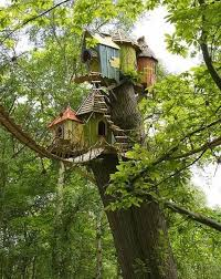 23 AMAZING Tree Houses  SMOSH