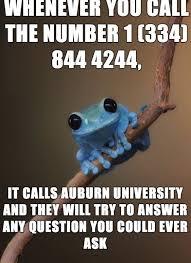 Fact Frog Meme - 87 best derp images on pinterest funny stuff ha ha and dates