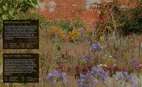 plants native to england wild garden weekends book wild things publishing