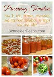 tomates cuisin s preserving the harvest tomatoes cuisines recettes et idée