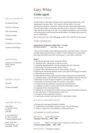Service Advisor Resume Sample by Sales Cv Template Sales Cv Account Manager Sales Rep Cv