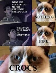 Grumpy Cat Memes Christmas - grumpy cats christmas 11