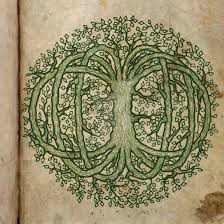 celtic tree of by kerrymcquaid on deviantart
