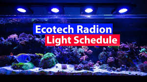 reef tank lighting schedule ecotech radion lighting schedule settings and profiles download