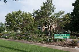 Define Tree Green Spaces Define Csu Source Colorado State University