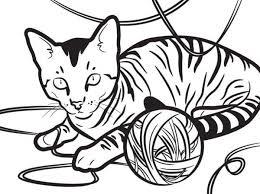 cat coloring super cat color pages printable cute cat