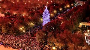 102nd chicago tree lighting time lapse