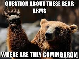 Right To Bear Arms Meme - question about these bear arms where are they coming from right