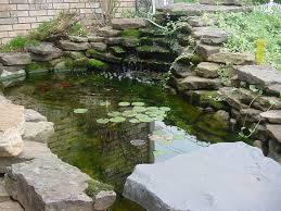 exteriors garden garden fish ponds designs with the latest