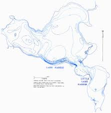 Tavares Florida Map by Hydrology Of The Oklawaha Lakes Area Of Florida Lake Harris And