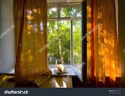 stock photo opened plastic window with book open and view to green