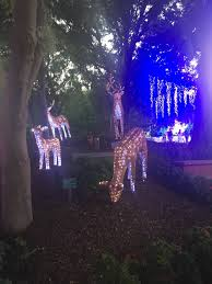 christmas lights spectacular at the hunter valley gardens so
