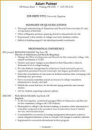 resume summary vs objective objective summary resume professional summary example for resume