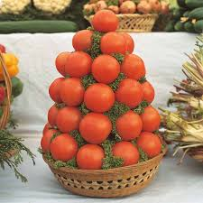 tomato u0027alicante u0027 thompson u0026 morgan