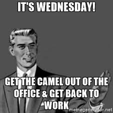 Get Back To Work Meme - 44 amusing wednesday work memes images pictures picsmine