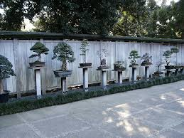 the 25 most inspiring japanese zen gardens university zen gardens