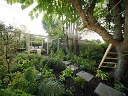 Shady Backyard Ideas Best 25 Shady Backyard Ideas Ideas On Pinterest Shade Garden