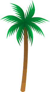 palm trees pic free download clip art free clip art on