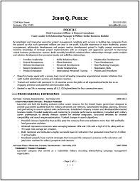 Project Manager Resume Tell The Company Or Organization Executive Project Manager Resume Writer The Resume Clinic