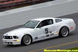 racing mustangs ford racing mustangs win at daytona