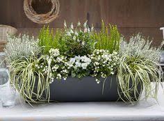 herbstbepflanzung balkon herbstbepflanzung pflanzgefäße gardens flowers