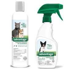 flea u0026 tick control for cats bayer advantage shampoo u0026 spray