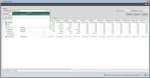 Budget Cash Flow Spreadsheet by Cash Flow Manager Help And User Guide Sicon Ltd