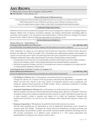 resume resources examples this sample human resources resume is