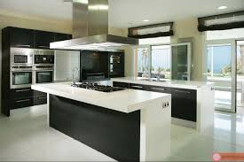 Modern Kitchen Designs Modern Kitchen Designs 2017 Gallery With Contemporary Picture