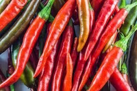 100 low fat diet foods for gallbladder kevin songer u0027s