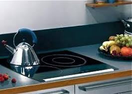 Which Induction Cooktop Is Best 5 Energy Efficient Induction Cooktops For Small Kitchens Treehugger