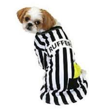 Ref Costumes Halloween Amazon Rufferee Dog Costume Striped Referee Pet Tee