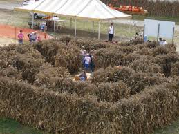 Pumpkin Patch St Louis Mo by Events