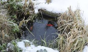 How To Make A Patio Pond How To Protect Your Garden Pond From The Winter Freeze Garden