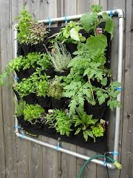 5 amazing ideas on how to make a vertical vegetable garden