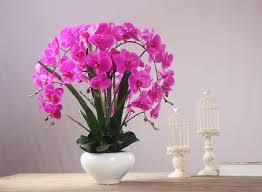 orchid flower arrangements 1set silicon material orchid flower arrangement bonsai flower