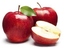 vegan power foods for dogs apples u2013 v dog