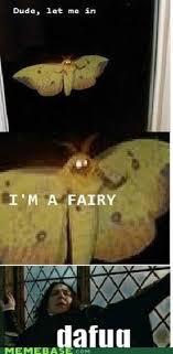 Moth Meme - any plans for 4 20 welovegaming pinterest chistes funny