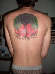 upper back willow tree tattoo for men in 2017 real photo