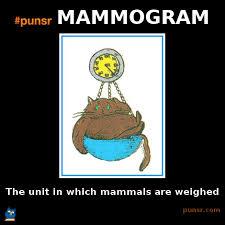 Mammogram Meme - punsr mammogram meme punsr com there is a joke in every word