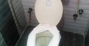 How To Use A Bidet Toilet Seat Fact Check You Should Never Put Toilet Paper On A Toilet Seat