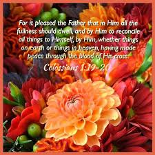 238 best colossians images on scriptures bible and