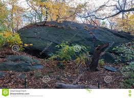 New York vegetaion images Big rock on garden in central park new york stock photo image jpg