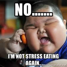Emotional Eating Meme - no i m not stress eating again fat chinese kid meme